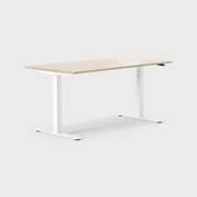 Oberon 160 x 80 cm, Sitt / stå, ben i hvitt, Plate i eik