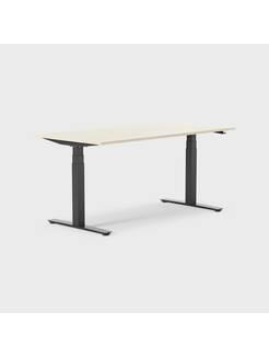 Oberon 160 x 80 cm, Sitt/stå, ben i svart, Skiva i björk