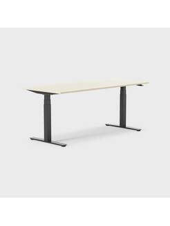 Oberon 180 x 80 cm, Sitt / stå, ben i svart, Plate i bjørk
